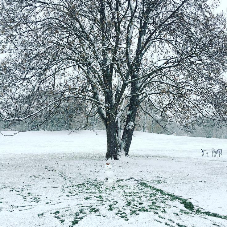 HomePage  gaartenbau.de  Der erste richtige Schnee.  Jetzt hat uns das Wetter überzeugt die Gartensaison ist vorbei.  #GaartenundLandschaftsbau #gaartenbau #Gartenplanung #Gartenbau #Gartenideen #landscaper #gardendesing #garden #outdoorliving #luxury #landscapearchitecture #landscapedesing #landscaping #gardenlovers #architect #architecture #landscapelovers #live #ilovemyjob #live #lovemyjob #tree #sthil #treeworld #trees #schnee #mannheim #luisenpark #snow #snowman #schneemann