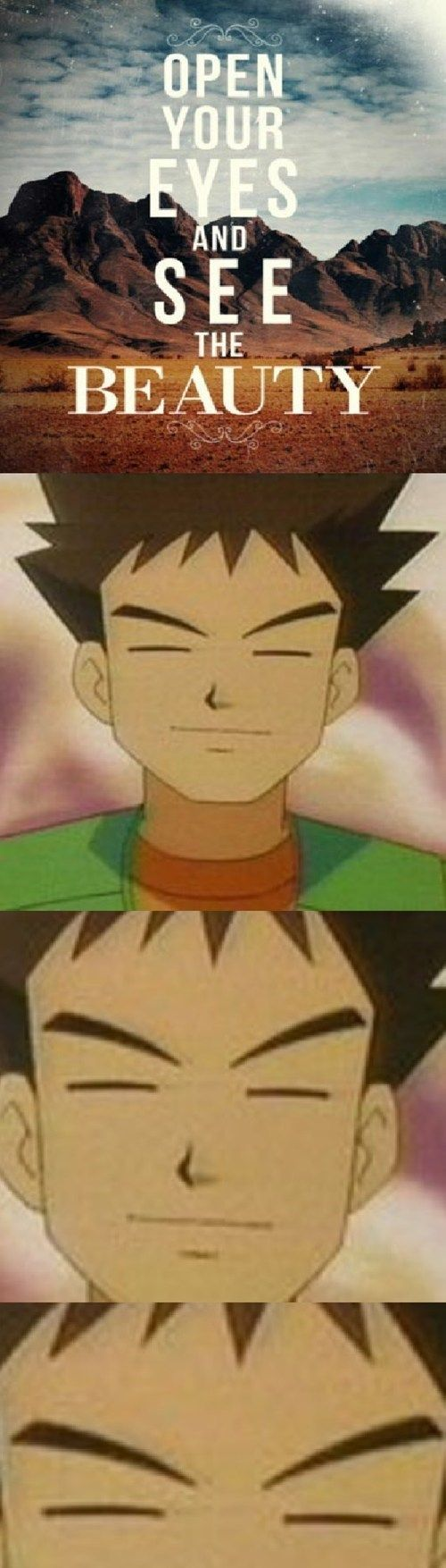 im so used to Brock's eyes that if the people at gamefreak were like let's let him see this season I would just be like WHERE THE HELL DID YOU PUT BROCK!!!