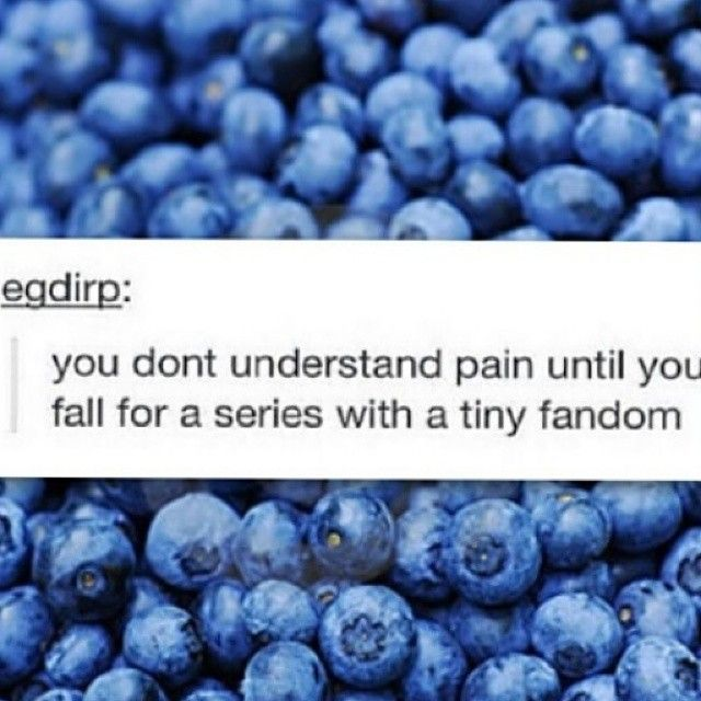 THIS IS ALMOST MY ENTIRE LIFE. WHAT'S EVEN WORSE THAN A TINY FANDOM IS NO FANDOM -COUGH- ATHERTON -COUGH-