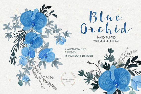 Blue Orchid Clipart Orchid Watercolor Watercolor Clipart Floral Clipart Wedding Invitation Png Clipart Hand Painted Wreath Clipart Blue Orchids Watercolor Clipart Orchids