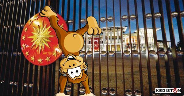 La Turquie deviendrait un asile de fous, ou un zoo, c'est au choix. Mais attention au gardien méchant, c'est écrit à l'entrée.