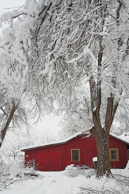 red barn in the snow, Albuquerque, New Mexico