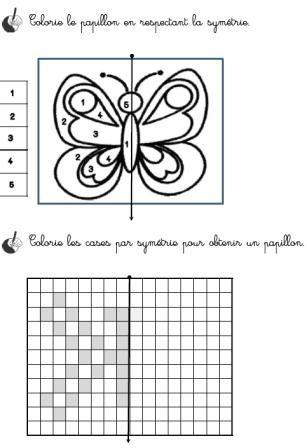 Thème de juin : Les insectes, autour des albums d'Antoon Krings - Activités pour la Grande section maternelle