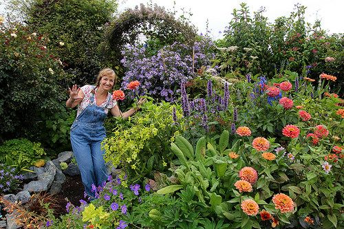 Annie's Annuals and Perennials - Retail and Online Nursery, Buy Plants and Flowers