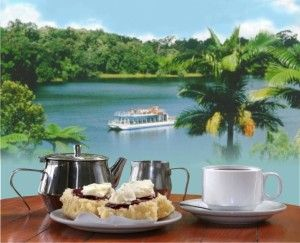 Lake Barrine where you'll get the BEST Devonshire Tea on the #athertontablelands