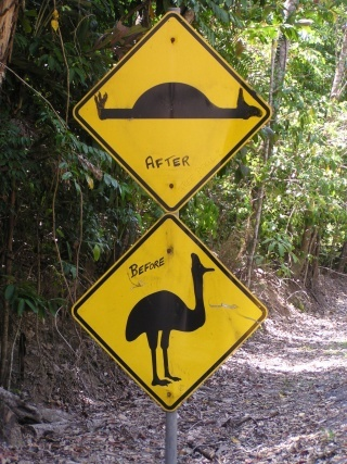 Daintree roadsign, before and after
