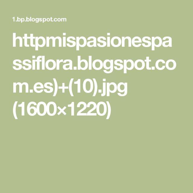 httpmispasionespassiflora.blogspot.com.es)+(10).jpg (1600×1220)