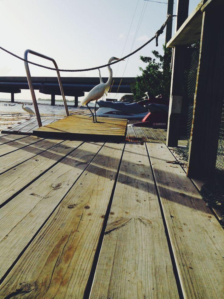 Key Largo, FL Photo By Selin Ozer