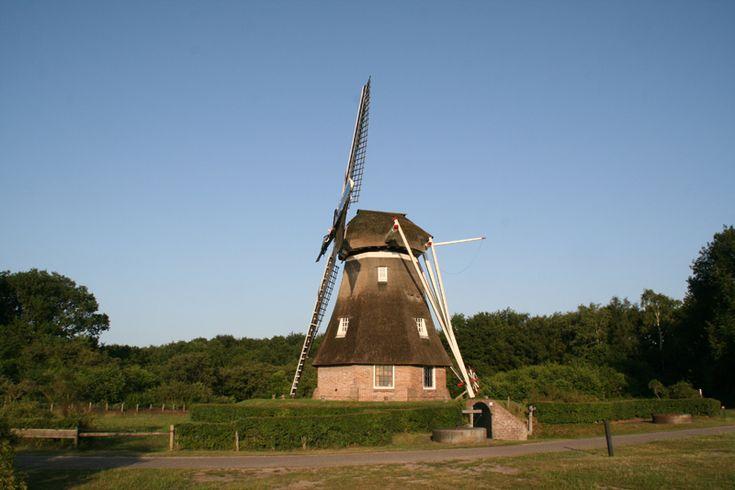 U dacht dat molens echt Nederlands waren? In Engeland staat er ook een. In het buurtschap staat molen De Zaandplatte. Het is een achtkantige houten beltmolen uit 1964. De molen is eigendom van de Stichting Vrienden van de Ruiner Molen. De molen is maalvaardig en draait op vrijwillige basis. Molen de Zaandplatte Engeland 9 7963 PW Ruinen