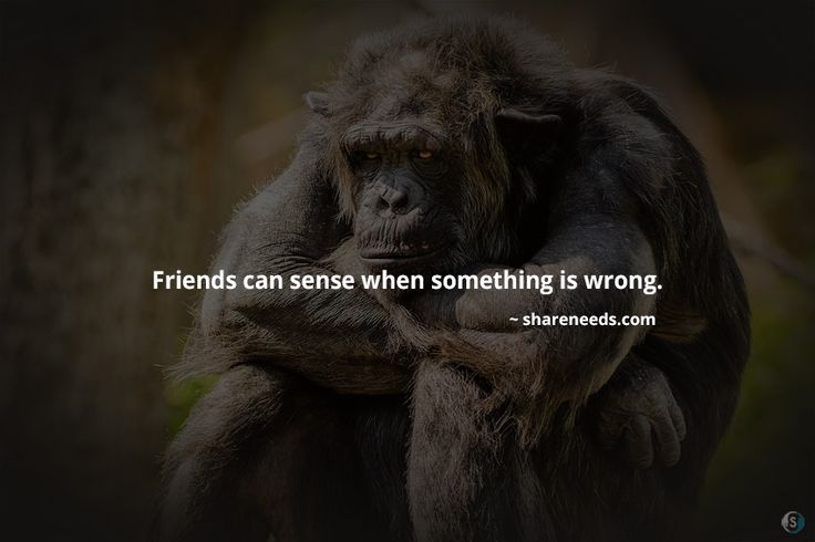 Friends can sense when something is wrong.  #friendshipquotes