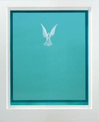 Damien Hirst - Dove