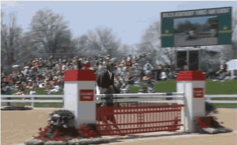 """"""" So this just happened… Rolex 2014 """" Yikes"""