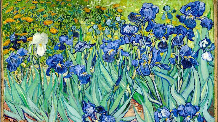 Museu Van Gogh Amsterdã tickets: comprar ingressos agora | GetYourGuide.com.br