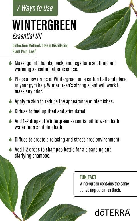 Wintergreen oil is sourced from the rural mountains of Nepal and is steam distilled from the leaves of the creeping shrub. The soothing and stimulating properties of this oil give it an uplifting, minty, and refreshing aroma. FUN FACT: Wintergreen and Birch are the only plants in the world that contain methyl salicylate naturally. Wintergreen oil is not safe to be taken internally.
