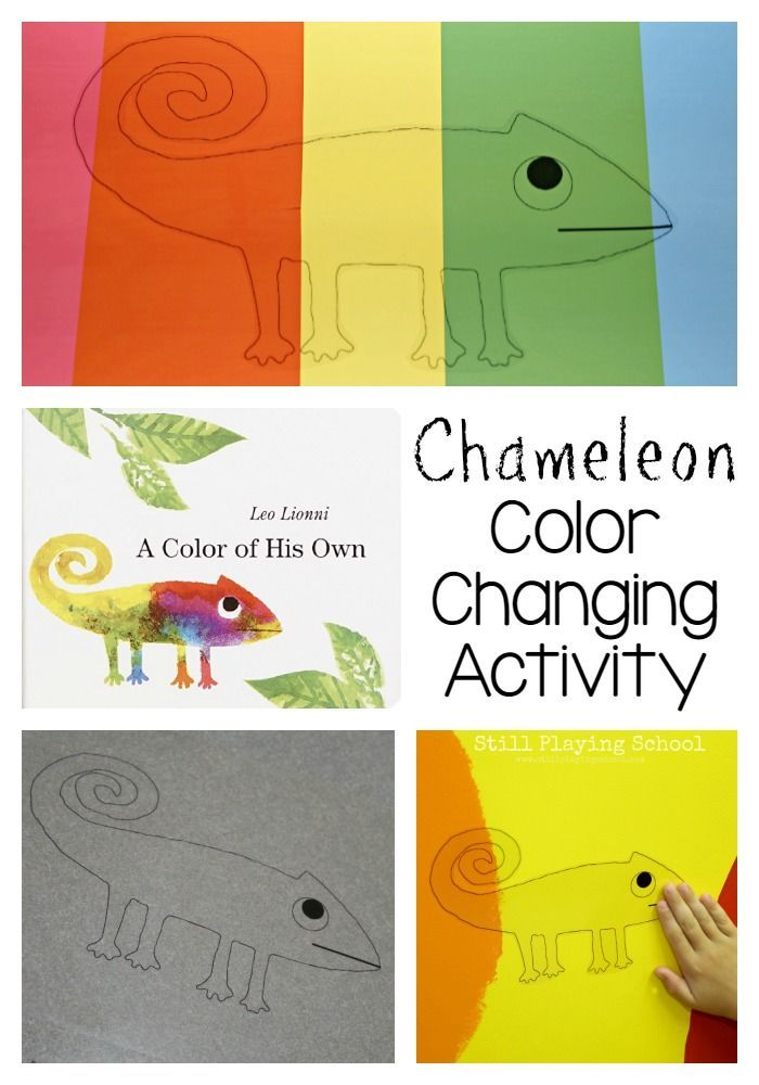 chameleon color changing activity for a color of his own - Color Games For Kindergarten