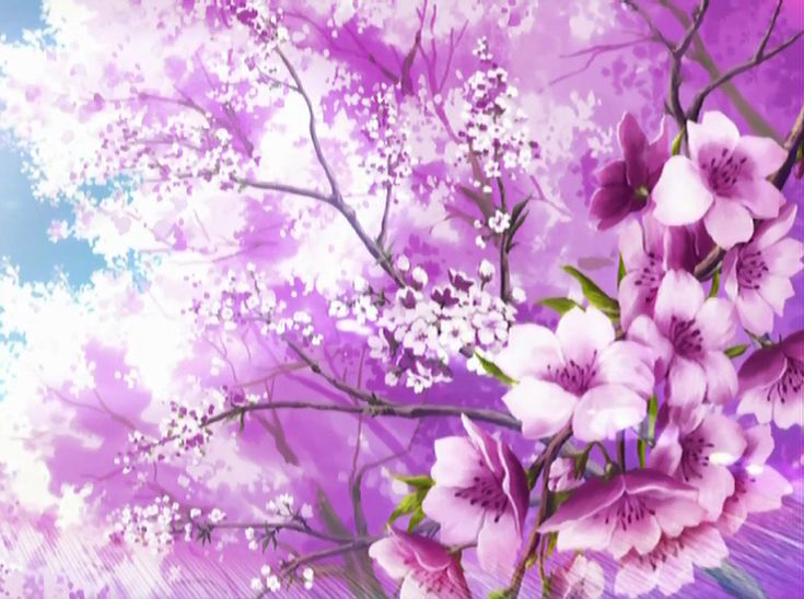 sakura_blossoms_wallpaper_by_DragonladysLair.jpg (1030×768)