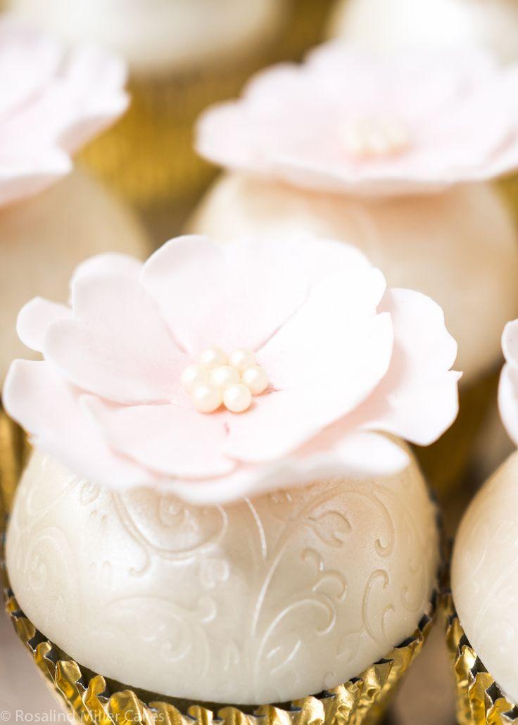 Best Daisy Miller Cupcakes Photos - Joshkrajcik.us - joshkrajcik.us