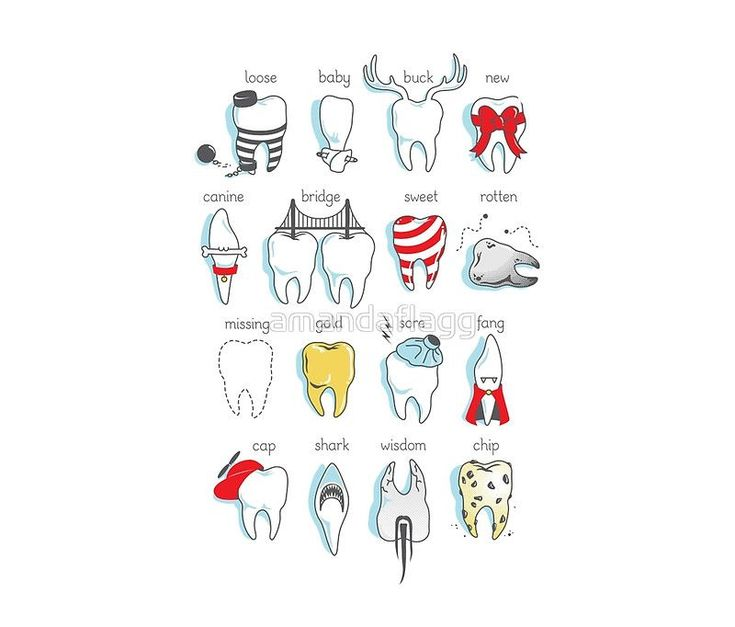 Right emergency dentist you are dentista dentistschool