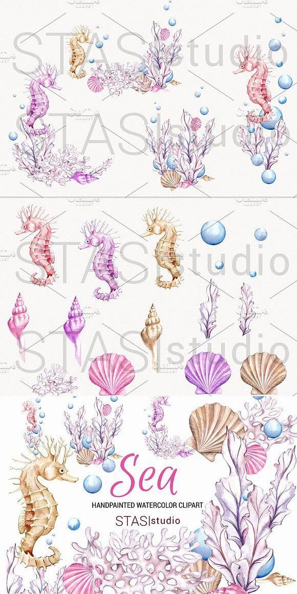 Ocean Watercolor Clipart Seahorse Watercolor Clipart Clip Art