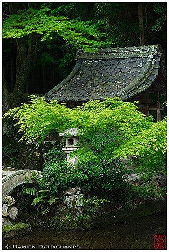 Off the beaten paths: Ichigon-ji temple, Kyoto | by Damien Douxchamps