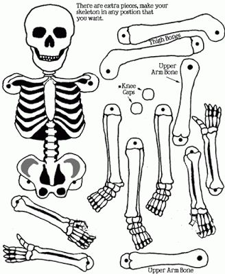 SKELETON CRAFT | learningenglish-esl