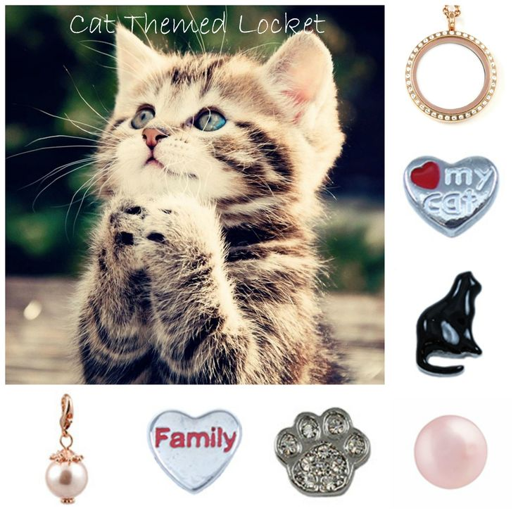 Kitty Cat - South Hill Designs Locket Create your story at https://southhilldesigns.com/audracolpitts