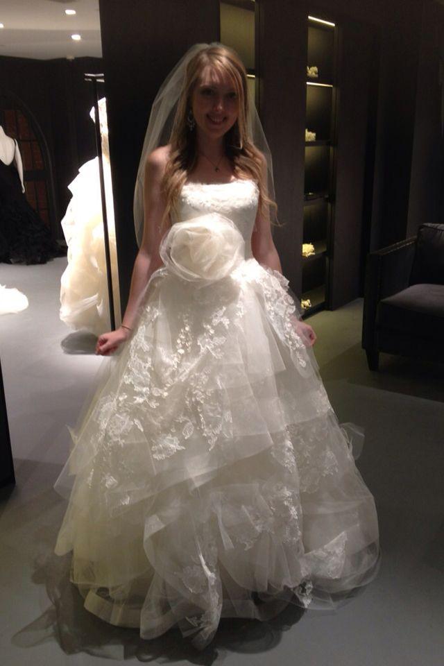 Fabulous Beautiful Wedding Dress verawang helena