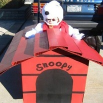 Awesome Snoopy Wheelchair Halloween Costume!  Bet I could figure out a non wheel chair version...