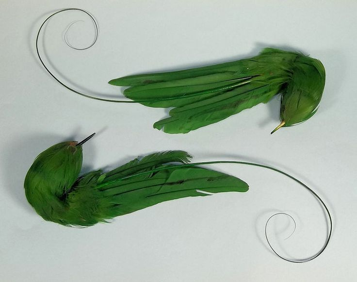 Pair Vintage Millinery Hat Feather Trim Green Birds w Curly Sprigs | eBay