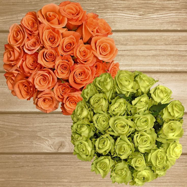 Rose Duo Green and Orange-  EbloomsDirect#roses #Promo #Flowers #wedding #events #bouquets #arrangement #party #fall #winter #summer #spring #harvest #Christmas #garden #centerpieces #autumn #tropicalflowers #recipe #decor #bridal #floral #DIY #gift #online #valentines #bride #ideas #blooms #anniversary #mothersday #baby #gardening #plants #holidays #fashion #home #decor #USA #Costco, #art #Texas #design #Sams #bulk #fiftyflowers #style #shopping