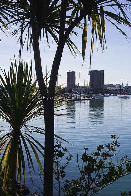 Westhaven Marina and Auckland Tank Farm   © Elyse Childs Photography