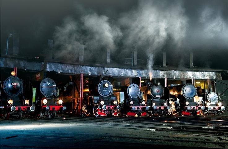 """Steam Locomotives taken by Krzysztof Maksymowicz. """"A station in Wolsztyn."""""""