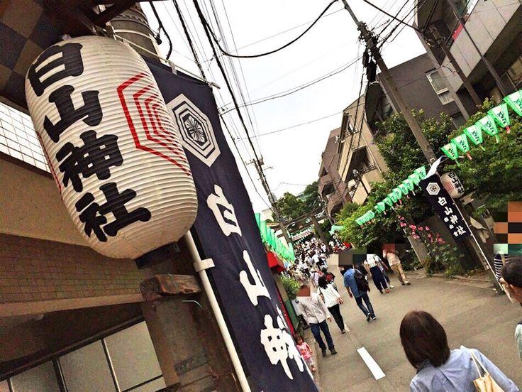 2016.06.12  #東京都 #文京区 #白山神社 #あじさい祭り     あじさい祭りをやっていました。 あじさい祭りがあったので行ってきました。