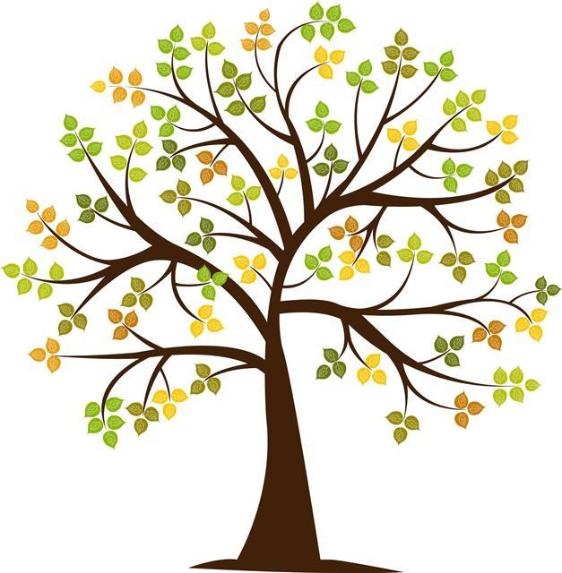 tree                                                                                                                                                     Más
