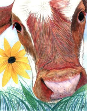 "Cow face close-up with grass and Brown-eyed Susan flower - 8 x 10"" / 20.32 x 25.4 cm Art Print of original colored pencil drawing by…"