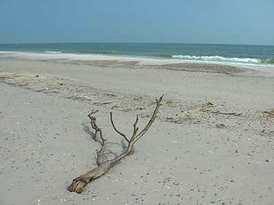 Gulf Shores Hurricane Katrina Photos