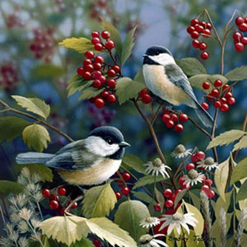Getting Ready by Bradley Jackson ~ chickadees on berry bush