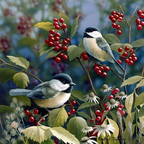 Chickadees on berry bush - Getting Ready by Bradley Jackson Paulette White - Nature Up Close