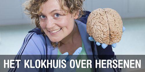 Het Klokhuis maakt elke week een aflevering over hersenen