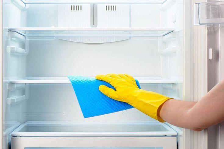 Kühlschrank Stinkt