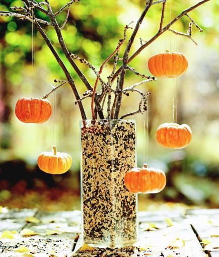 How to Decorate with Mini Pumpkins | Midwest Living