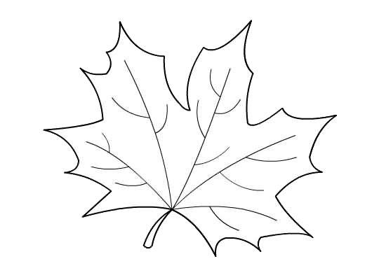 hojas de otoño para colorear 05