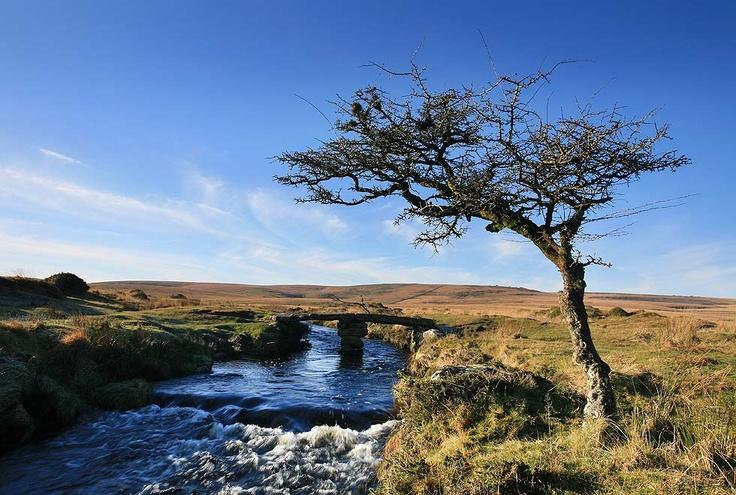 Dartmoor scene - Scorhill Clapper