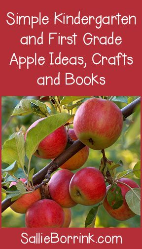 Simple Kindergarten and First Grade Apple Unit Ideas, Crafts and Books