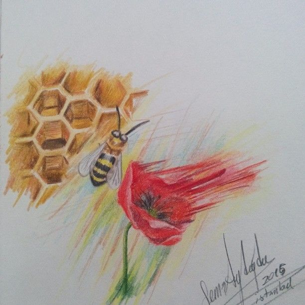 Arı ve gelincik