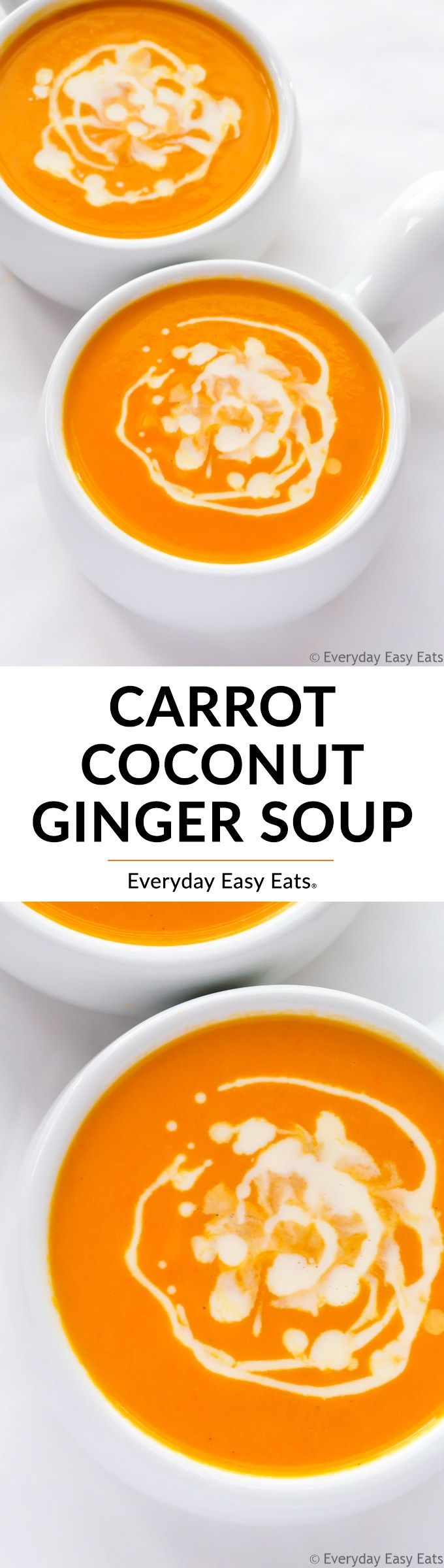 Everyday exotic ginger recipes easy