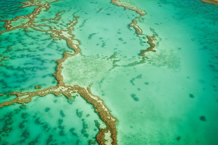 "Patterns of Nature - Aerial shot of the Great Barrier Reef in Queensland, Australia <a href=""https://www.instagram.com/martin_wasilewski/"">Instagram</a>  <a href=""https://de-de.facebook.com/Martin.Wasilewski.Photos"">Facebook</a>  <a href=""https://www.flickr.com/photos/martin_wasilewski"">Flickr</a>"