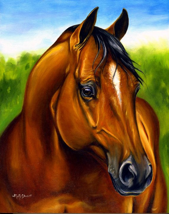 17 Best images about horses on Pinterest | Pencil drawings ...