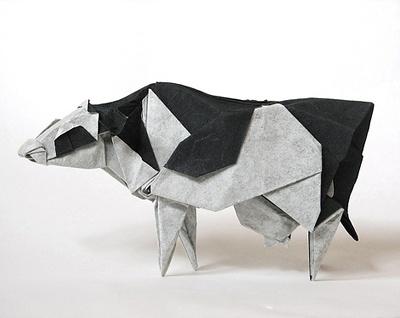 175 Best Cows Images