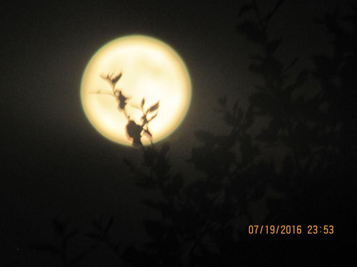 19-7-2016 Contemplando a Lua. Stº.Antº. das Areias-Marvão